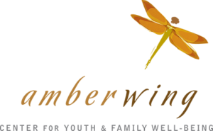 Amberwing logo with dragonfly
