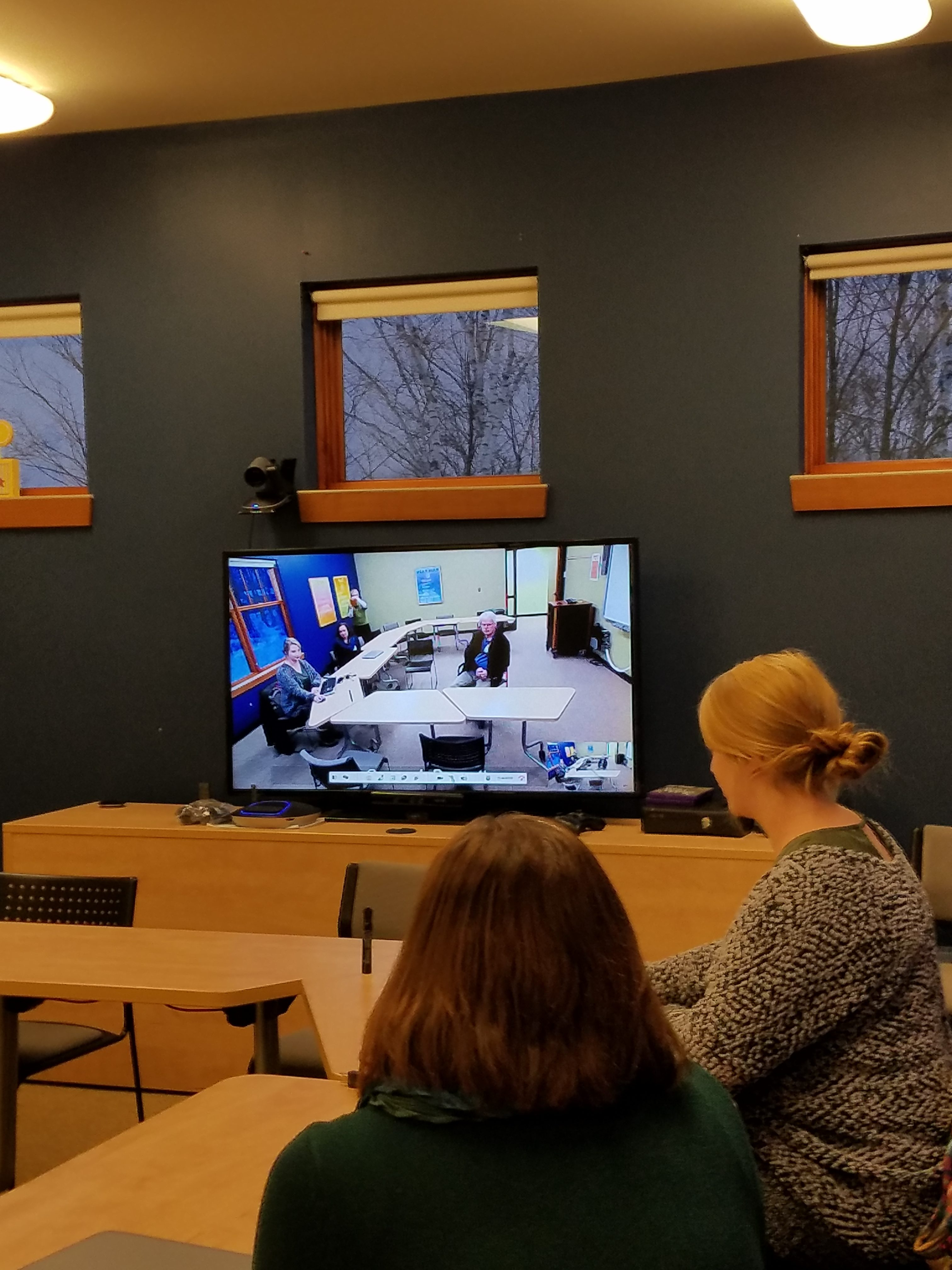 Conference room during a teleconference