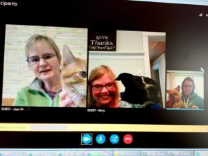 Miller-Dwan Foundation staff on a Skype call with their pets